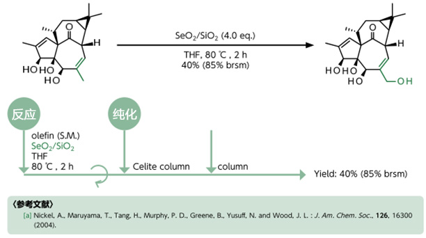 烯丙基的羟基化