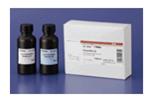免疫印迹用化学发光试剂ImmunoStar® 系列