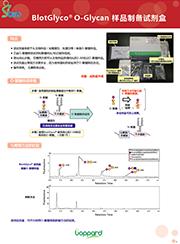 BlotGlyco® 糖链纯化试剂盒