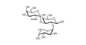 A血型抗原三糖 Blood group A antigen triaose, [49777-13-1]