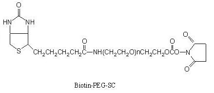 Laysan 生物素-PEG-琥珀酰亚胺碳酸酯 Biotin-PEG-SC